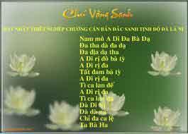 chu vang sanh