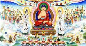Sự màu nhiệm trên đất Phật