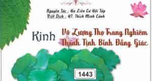 Kinh Đại Thừa Vô Lượng Thọ Trang Nghiêm Thanh Tịnh Bình Đẳng Giác