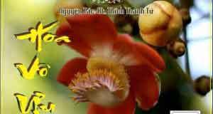 Hoa vô ưu